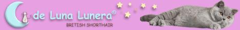 Banner De Luna Lunera