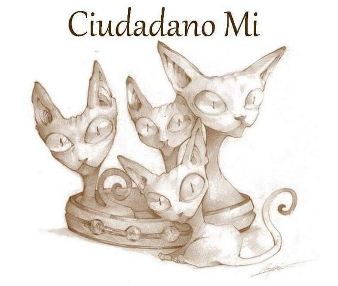 Banner Ciudadano Mi