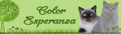 Banner Color Esperanza