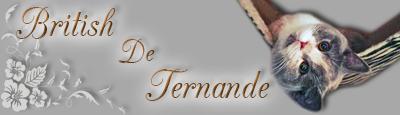 Banner British de Ternande